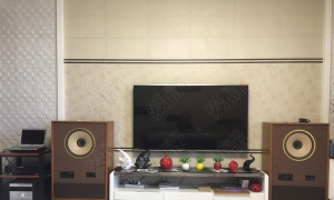 这才是大音箱该有的样子——拿破仑大同轴箱听音分享!