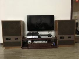 这才是真正的低频,一个低频控的选箱、听音实感!